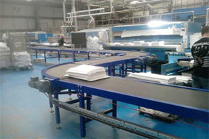 Flat Belt Conveyors Manufacturers